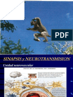 sinapsis y neurotransmision 2019.pdf