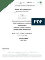 REPORTE-FINAL-SERV-SOCIAL.docx