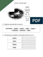 guía Leccion Pato