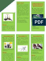 folleto2.0.docx