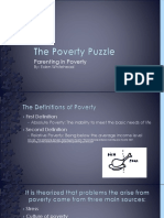 the poverty puzzle - copy