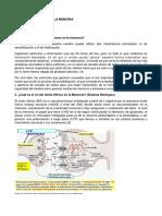 cuestionario-n4.docx