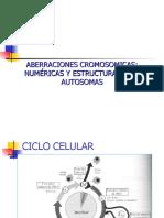Alteraciones autosomas 2006
