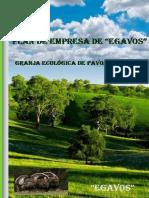 Plan-de-empresa-Pavos.pdf