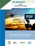 ejemplo plan de negocios flycat.pdf