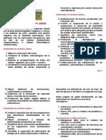 NUTRAFOL FERTILIZANTE ARROZ-Ver2 - Web