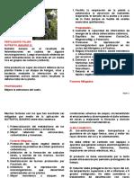 NUTRAFOL FERTILIZANTE FOLIAR BANANO SL-1-Ver2 - WEB.pdf