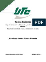 REPORTE DE LECTURA SUSTANCIAS PURAS.docx