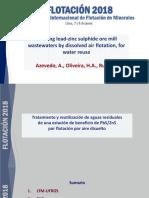 Flotacion PDF Azevedo Oliveira Rubio