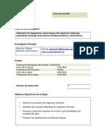 PRIMER INFORME DE AVANCE MODELO G1.docx