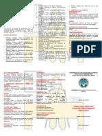 PERFIL DEL DIRECTOR DE UN ESTABLECIMIENTO EDUCATIVO.docx