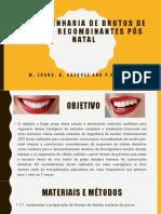 Embriologia para odontologia