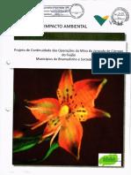 brumadinho estudo NICHO.pdf