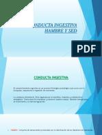 Conducta Ingestiva Diapositiva
