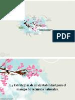estrategias de sustentabilidad.pdf