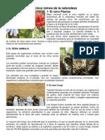 REINOS DE LA NATURALEZA JGBM.docx