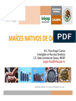 MAICES CRIOLLOS OAXACA.pdf