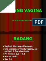 radang vagina