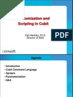 Customization and Scripting