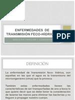 Enfermedades de Transmisión Feco-hídricas