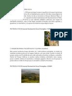 AREA PROTEGIDAS.docx