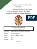 Minera Chinalco- Ccansaya Corrales Luis Fernando.docx