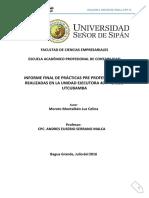ESQUEMA INFORME FINAL PPP II LUZ.docx