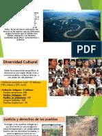 0_Deforestacion