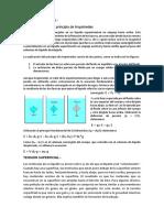 FUNDAMENTO TEORICO y CUESTIONARIO 5.docx