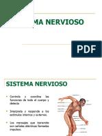 sistema nervioso .pptx