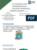 Aves silvestres como bioindicadores de contaminación ambiental.pptx