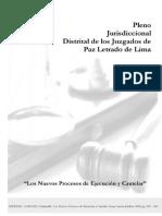 libro de proceso de ejecucion.pdf