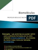 proteinas final.pptx