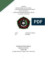 LAPORAN AGRA SELVIA.docx