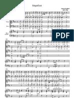 Johann Pachelbel - Magnificat in D (Coro & Basso Continuo)