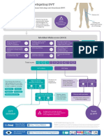DVT_infographic.pdf