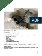 49 SP Compendio de Mineralogia