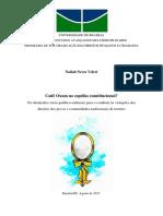 2017_NailahNevesVeleci.pdf
