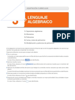03_adapt_curricular (1) (1).pdf