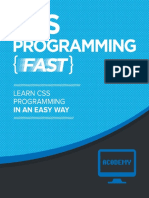 CSS Learn CSS FAST!.pdf