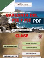 Clase 12 - Pie.pdf