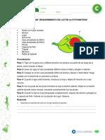 ACTIVIDAD - REQUERIMIENTO DE LUZ EN LA FOTOSINTESIS.pdf