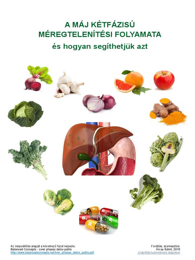 A méregtelenítés első fázisa Xenobiotikumok metabolizmusa