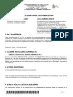 Acta Nº 16 Comité Territorial de Competición
