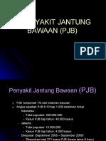 PJB.pdf