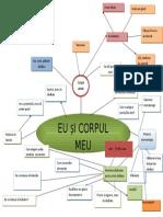 Harta Proiectului Model