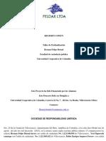 FELIPE LTDA (2).pdf