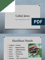 TUGAS PPT Cabai Jawa.pptx