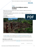 Renca_ Povo Wajãpi, Uma Barreira Indígena Contra a Mineração Na Amazônia _ Brasil _ EL PAÍS Brasil