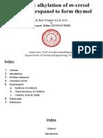 BTP Mid-Sem Presentation.pdf